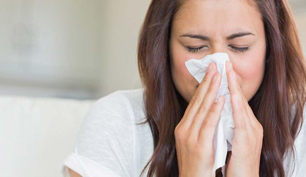 Alergija na prišice